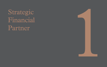 1 Strategic Financial Partner